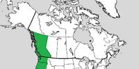 Cascadia (West Coast Secession)