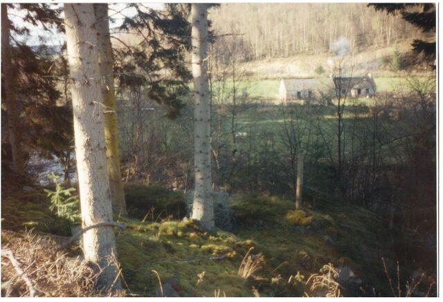 File:AvAr farm Pønder, Denmark.jpg