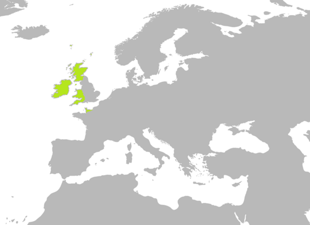 File:BlankMap-Europe-v3-800px.png