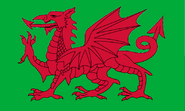 Welsh Cavalry Flag