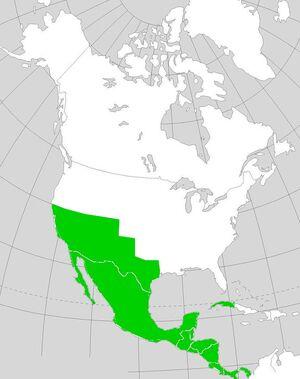 MexicoNapoleon's America