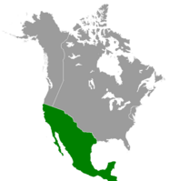 Mexico (Great Poland)