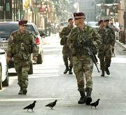 Quebec militia2