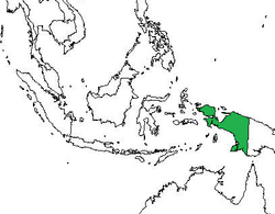 Location of West Papua.png