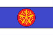 Manchuria Protectorate Flag Two Chinas