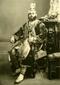 Maharaja Sultan Singh (Raj Karega Khalsa)