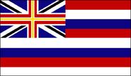 Flag Hawaii (VegWorld)