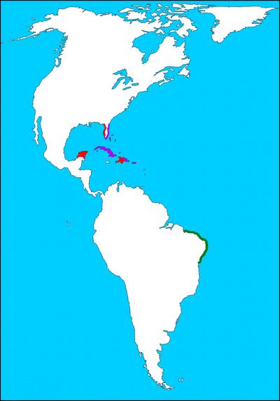 Americas1 bg
