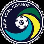 Cosmos2010