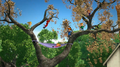 The Chipmunks and Chipettes In Tree.png