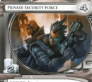 Private Security Force