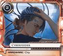 Cyberfeeder