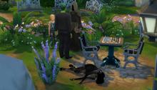 Susie's Death