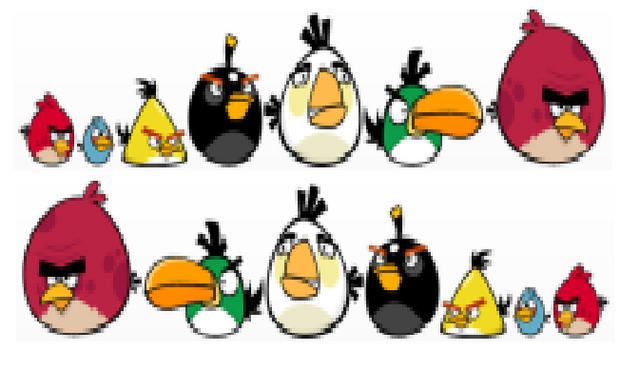 File:All birds2.png