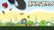 Angry birds madness