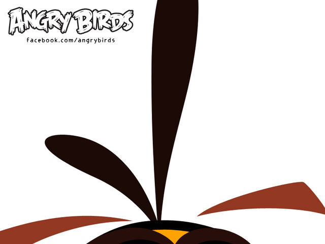 File:Rovio-Halloween-Teaser-Globe-Bird-2.jpg