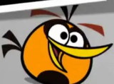 OrangeBirdResized