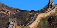 Great Wall of Birds