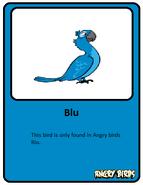 Blu-card