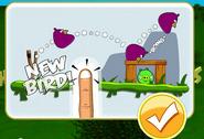 Purple Bird is a New Bird