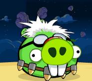 Dr. Pig
