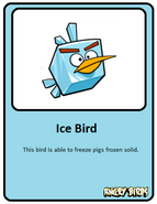 Ice-card
