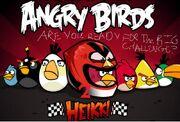 Angrybirdsheikki2image