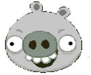 Silver Pig New