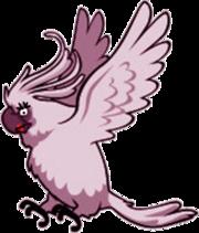 Female nigel