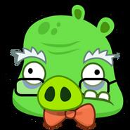 Professor pig
