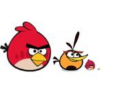 Red Orange Brother Eagle