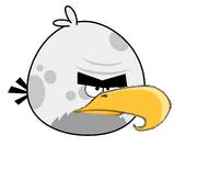 Mighty Big Brother Bird