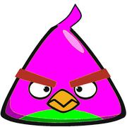 Patbird