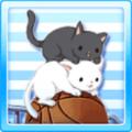Cat Basket Type1
