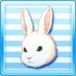 Animal face rabbit