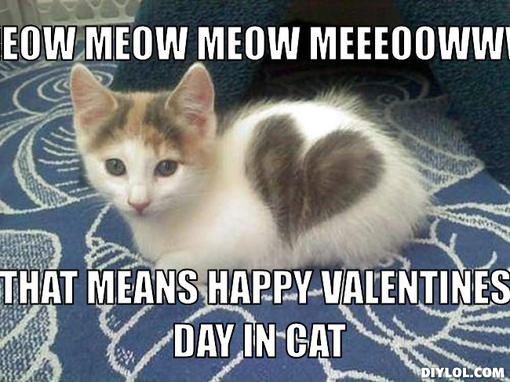 Image - Valentine-kitteh-meme-generator-meow-meow-meow ...