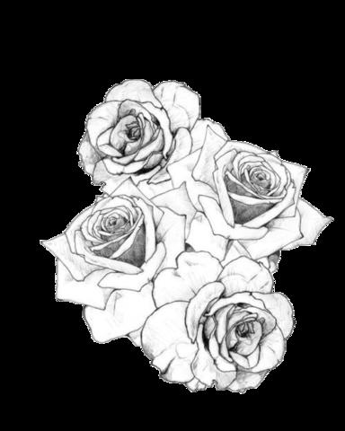 Image - Tumblr static black white roses tattoo.png ...