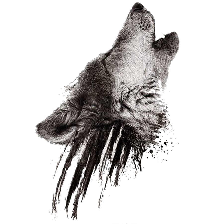 Image - Realistic howling wolf head on black smudges ...