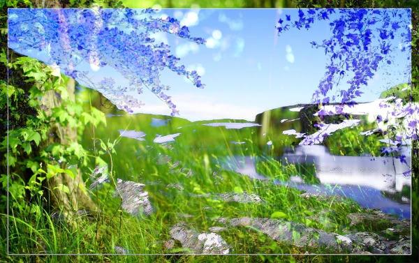 File:Beauty of Nature by H1llewe.jpg
