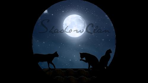 Moon-light-cat-desktop-background