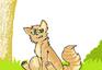 Warrior Cat 1