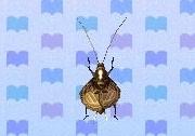 File:Bell cricket encyclopedia (New Leaf).jpg
