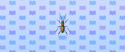 File:Tiger beetle.png