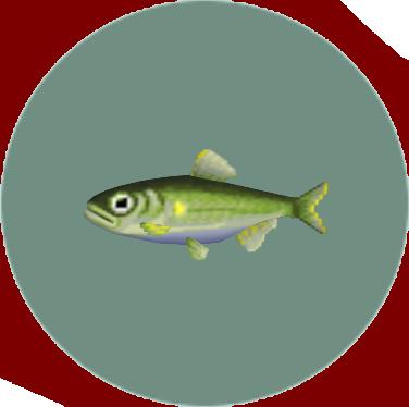 File:Sweetfish (City Folk).png