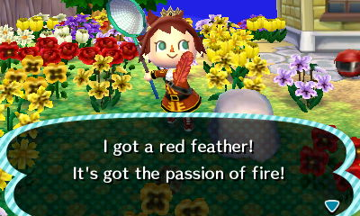 File:Player catches red feather.JPG