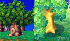 File:Trees.jpg