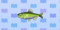 File:Sweetfish encyclopedia (New Leaf).jpg