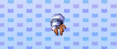 File:Hermit crab .png