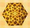 File:Leopard Umbrella.JPG