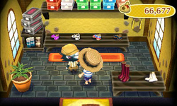 Nookling General Stores - Animal Crossing Wiki Guide - IGN